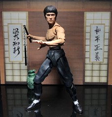 This Bruce Lee is a bad ass figure (chevy2who) Tags: figure action toyphotography toy lee bruce figuarts sh