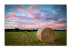 Heuernte (PhotoChampions) Tags: landscape landschaft abenstimmung wolken clouds twilight himmel sky erntr harvest heu meadow wiese feld fields germany deutschland pink landwirtschaft
