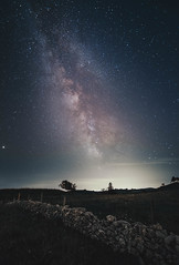Milky Way in Switzerland! (Igor.SimicPhoto) Tags: star noir night nuit vert arbre tree trees paysage photography photographie canon uga vla pelouse ciel parc neige snow mountain mountains montagne switzerland suisse landscape flanc de milkyway milky way