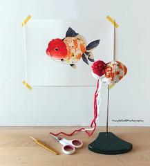 IMG_20180721_121001_663 (Mingle Doll 鳴娃娃) Tags: crochet crochetgoldfish crochetfish amigurumi amigurumidoll crochetamigurumi oranda orandagoldfish fancygoldfish 金魚 かぎ針編み金魚