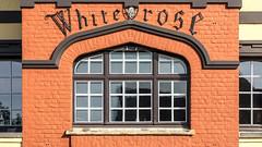 White Rose (lucico) Tags: 2018 belgien eu window westvlaanderen europa day dehaan facade fachada lettering typography bricks belgium europe