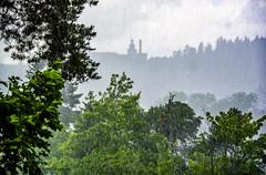 We are dreaming of rain! Summer rain! (lasse christensen) Tags: dsc3527norway bærum akershus bærumsykehusbærumhospitalregnrain