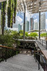 IMG_3661.jpg (patrick t ngo) Tags: architecture downtownmiami herzogdemueron miami museum museumpark pamm pérezartmuseummiami