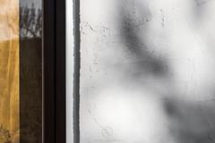 Vivienda unifamiliar en Villanueva de Duero (ruheca | Fotografia de Arquitectura y mucho +) Tags: 2018 arquitecturaespañola castillayleon policarbonato rehabilitacion residencial valladolid villanuevadeduero viviendaunifamiliar architecture architecturephotography arquitectura entrearquitectura españa fotografiadearquitectura grava house javierarias ladrillo madera moderna spain susanagarrido textura wwwentrearquitecturacom esp
