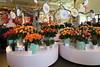 Keukenhof (gchurch44) Tags: holland keukenhof bunch flowers roses elements