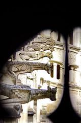 1335 Val de Loire en Août 2017 - Tours, le cloître de la Cathédrale (paspog) Tags: tours france valdeloire cathédrale cathedral kathedral 2017 gargouille gargoyles
