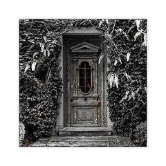 La vielle porte (Jean-Louis DUMAS) Tags: bw black noir noretblanc noiretblanc sepia porte art artist artistique artistic monochrome fleurs flower