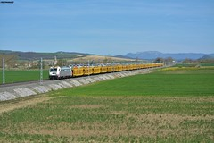 253 (firedmanager) Tags: renfe renfeoperadora railtransport renfemercancías 253 bombardiertraxx tren train trena portacoches alava
