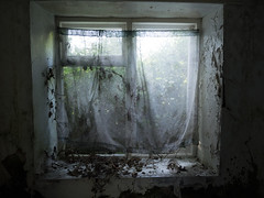 The Old House on Liscabble Road (Feldore) Tags: gortin abandoned cottage house farm northern ireland irish spooky window old derelict tyrone sperrins haunted feldore mchugh em1 olympus 1240mm curtains lace