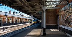 Nuneaton Platform 1 (Peter Leigh50) Tags: train drs shed class 66 platform station nuneaton railway railroad rail fujifilm fuji xt2 mural people sunlight sunshine shadow shade
