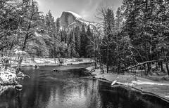 Black & White Yosemite NP Fine Art!  B&W Yosemite National Park Winter Snow Landscape Photography! El Capitan Half Dome! Sony A7R II Mirrorless & Carl Zeiss Vario-Tessar T* FE 16-35mm f/4 ZA OSS Lens SEL1635Z! Scenic California Winter Elliot McGucken (45SURF Hero's Odyssey Mythology Landscapes & Godde) Tags: black white yosemite np fine art national park winter snow landscape photography el capitan half dome sony a7r ii mirrorless amp carl zeiss variotessar t fe 1635mm f4 za oss lens sel1635z scenic california