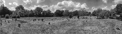 Panorama of Hampstead Cemetery (IanAWood) Tags: hampsteadcemetery westhampstead london londonscemeteries cemeteryparks londonsdead cemeteryclub headstonehunting bringoutyourdead citiesofthedead graveyards androidphotography cameraphonephotographer mobilesnaps capturedonp9 huaweip9 editedinsnapseed handheldpanorama cameraphoneblackandwhite panoramiccemeteries notwalkingwithmynikon