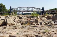 auf dem Domfelsen (chipdetty) Tags: sachsenanhalt magdeburg landeshauptstadt domfelsen elbe niedrigwasser hubbrücke fluss