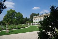 JLF17910 (jlfaurie) Tags: jardin garden bagatelle paris france francia parc parque 22072018 mpmdf jlfr jlfaurie mechas roseraie fleurs roses rosas