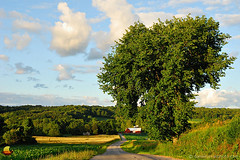 Western New York Countryside at Sunset (DSH_3637) (masinka) Tags: newyork unitedstates rural countryside western sunset warm light landscape photography happy bright road barn green clouds summer etbtsy