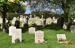 St. Nicholas Church graveyard (SteveInLeighton's Photos) Tags: england may dorset purbeck 2018 church grave graveyard gravestone studland