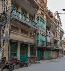 0F1A4947 (Liaqat Ali Vance) Tags: our oriental architectural heritage google architecture archive prepartition homes liaqat ali vance photography lahore punjab pakistan canon lovers