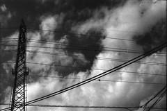 送電線 (frenchvalve) Tags: 送電線 powerline sky cloud monochrome bnw film analog slr