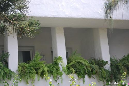 Готель Хардін Тропікаль, Тенеріфе, Канари  InterNetri  313