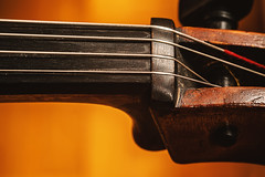 Old Cello Abstract (dejankrsmanovic) Tags: cello violin string symphonic orchestral musical instrument structure detail closeup professional occupation art artistic acoustic wood wooden concept conceptual design style old retro dusty vintage oldfashioned cinematic crafted handmade brown macro thing