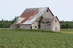 Old Barns in Forestview, PEI (Craigford) Tags: forestview pei canada barn barns farm country fields rural