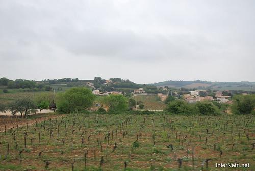 Шатонеф-дю-Пап, Пррванс, Франція InterNetri.Net France 0084