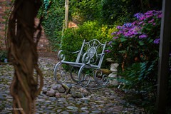 A quiet spot (norm.edwards) Tags: quiet seat garden flowers love relax water cobbles tree