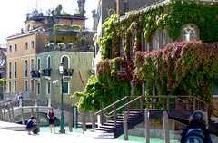 Photographer and Vine Covered Building in Venice, Italy (Joseph Hollick) Tags: venice italy photographer vine