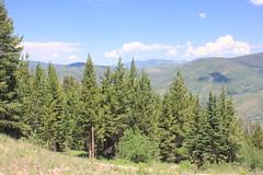 IMG_6127 (avsfan1321) Tags: colorado unitedstates unitedstatesofamerica usa vail rockymountains midvail skiresort mountains landscape nature mountain