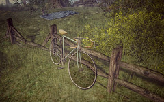 bianchi celeste (Sabine Maruti) Tags: landscape scenic bianchi bicycle virtual sl secondlife netherwood