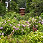 Gansen-ji 岩船寺 thumbnail