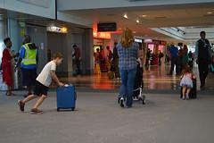 And sister takes the lead! (radargeek) Tags: den denver airport travel colorado travelers traveler kid kids children carryon stroller