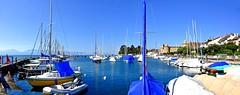 Vieux Port de Morges (Diegojack) Tags: morges vaud suisse d7200 nikon nikonpassion port voileslatines bateaux manifestation voiliers panorama assemblage groupenuagesetciel