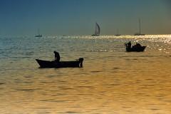 Pescatori nel tramonto di Napoli (enrico.pighetti) Tags: enricopighetti napoli martirreno italia italy italie touritaly pescatori pescatore pesca mare tramonto sunrise sea vele barche barchettadapesca