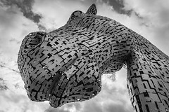Duke (Leanne Boulton) Tags: thekelpies thehelix horse sculpture sky urban landscape abstract closeup isolation urbanlandscape art andyscott shape form face perspective pointofview pov tone texture detail depth naturallight outdoor light shade stilllife humanity culture canon canon5d 5dmkiii wideangle 24mm ef2470mmf28liiusm black white blackwhite bw mono blackandwhite monochrome glasgow scotland uk