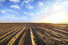 Beachlines ☀️ (Jeff Camphens) Tags: beach summer spring sea sand clouds sky sun sunny shadows contrast nikon d3300 10mm