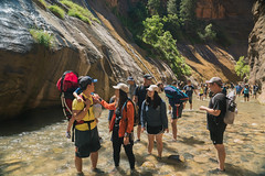 2018-06-23 ZionDay2-12 (Gracepoint Riverside) Tags: opjrreyes 2018 zion narrows