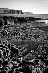The Cliffs of Moher (Stephen A. Wolfe) Tags: swolfe2000 abstract acrosemulation adobelightroom adobelightroomcc atlanticocean blackwhite cliffsofmoher clouds corkscrewhill countyclare doolin exporttocopyright fujixt2 galwaybay httpstephenwolfephotography ireland landscape moon ocean rocks seascape sunset theburren vacation