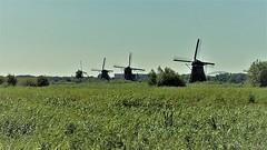 Kinderdijk (24) (pensivelaw1) Tags: netherlands holland europe kinderdijk windmills canals museum