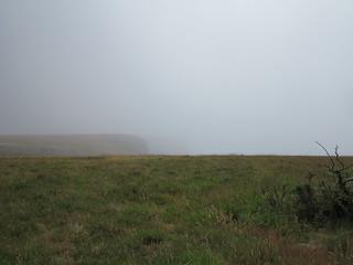 faint landscape