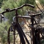 vieux vélo - old bike thumbnail