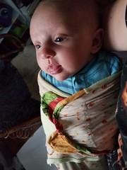 Burrito (quinn.anya) Tags: eliza baby burrito swaddle