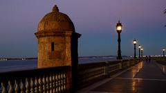 Las luces del paseo (Raquel Borrrero) Tags: cádiz spain españa anochecer twilight streetlight farolas alamedaapodaca winter invierno light luz reflejos reflections
