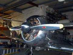Butch Schroeder's P51 pic2 (michaelyouhas) Tags: ww2 airplanes youhas 2018 butch schroeder danville illinois balloons over vermilion p51 mustang