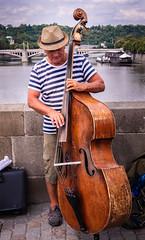Jazz in Prague (Klummen) Tags: musician karluvmost prague jazz bass praha river street