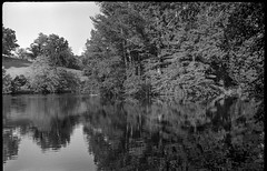 pond, reflection, rolling hill, Biltmore Estate, Asheville, NC, Fed 4, Industar 26, Kodak TMAX 400, Ilford Ilfosol 3 developer, 7.4.18 (steve aimone) Tags: pond reflections hill rolling landscape biltmore biltmoreestate fed4 industar2650mmf28 rangefinder soviet kodaktmax400 ilfordilfosol3developer 35mm 35mmfilm film blackandwhite monochrome monochromatic