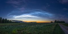 DSC5196 Panorama (Tanel Kindsigo) Tags: estonia noctilucentclouds tartucounty clouds dusk grass helkivadööpilved midnight nighscape outdoor sky spaceclouds summer tranquility trees