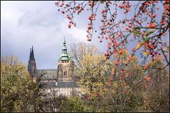 Praha (Eva Haertel) Tags: eva haertel canon5dmarkiii landschaft landscape tschechischerepublik czechrepublik praha prag prague pragerburg castle kathedrale cathedral turm tower park baum tree himmel sky bedeckt cloudy