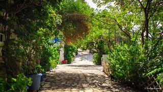 Blue Horizon - Samos