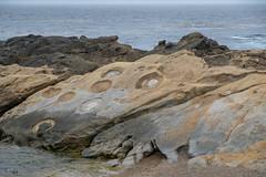 Fuji-X-E3-DSCF1248-20180719 (Drew Saunders) Tags: california ocean pointlobos statepark westonbeach